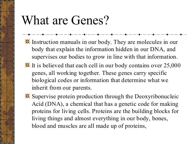 genes contain instructions for making