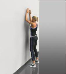 instructions to shoulder resisted external rotation