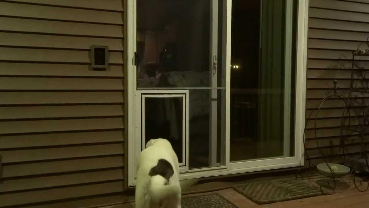 fitting patio pet door instructions