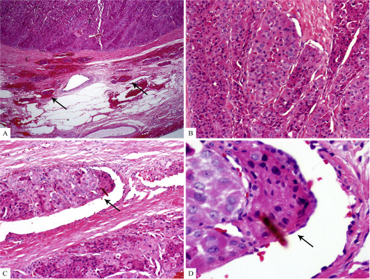 journal of clinical pathology instructions for authors