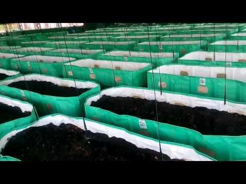 vermi hut worm farm instructions