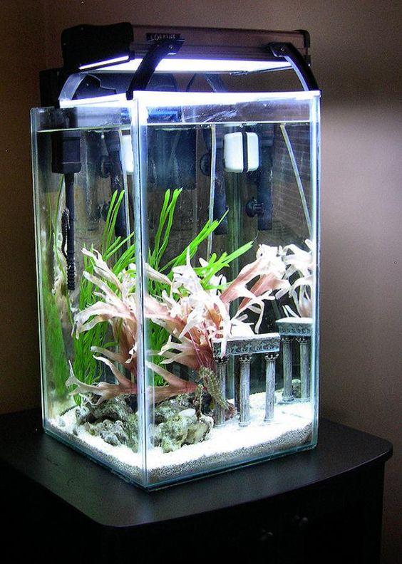 kmart fish tank filter instructions
