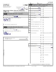 form 1120s schedule k instructions