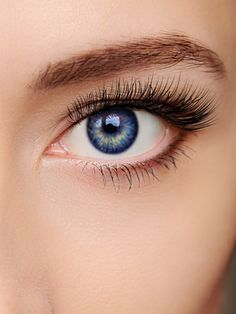 refectocil eyelash perm instructions