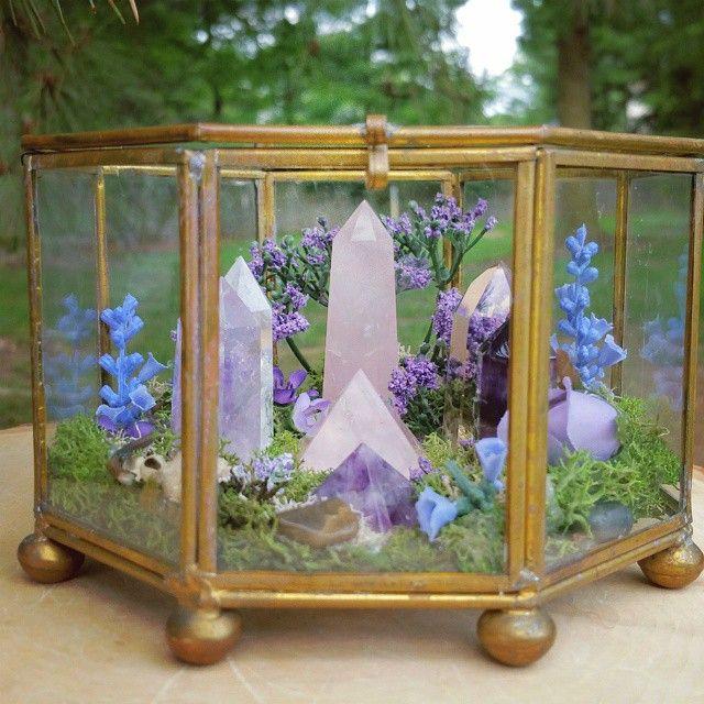 magic crystal garden instructions