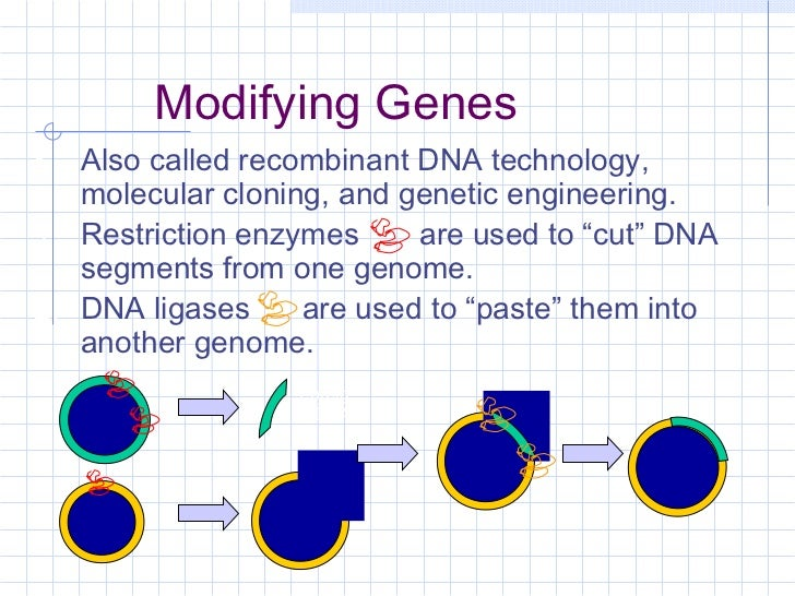 instructions for genetic modification