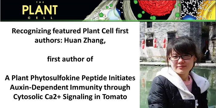 plant cell instructions for authors